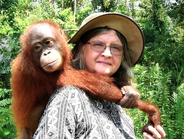 You'll travel in the rainforests of Borneo,  Indonesia with author Rozanne Weissman AND Dr Birute Mary Galdikas, world's leading primatologist on orangutans. Look how that orangutan loves 💕 her...
